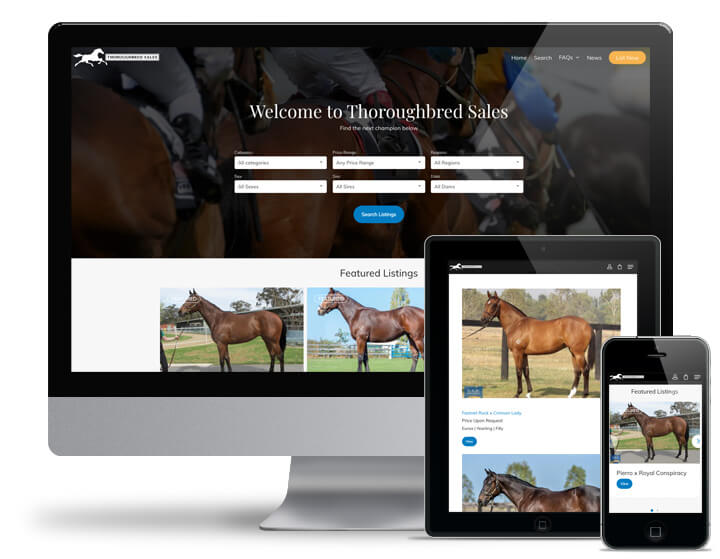Thoroughbred Sales